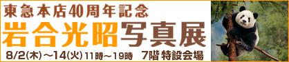 Iwagou418