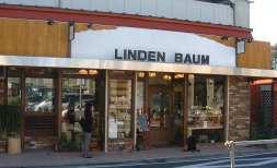 Linden021104